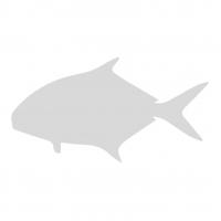 Куски лосося (полосками) с/м б/ш NOR (7,5 кг)