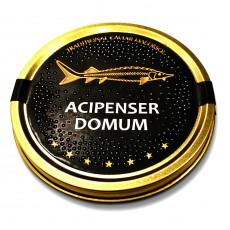 Черная икра осетровая Acipenser Domum️ (100 грамм)