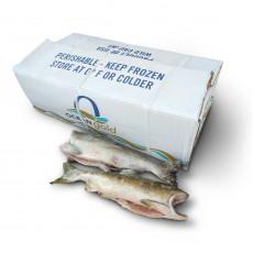 Горбуша б/г с/м Грейд 1 Ocean Gold Seafoods (USA)