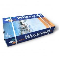 Мойва с/г с/м 25-35 Westcoast (NOR) (20 кг)